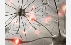 Epilepsy Deportation Case